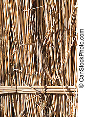 background of reed fence