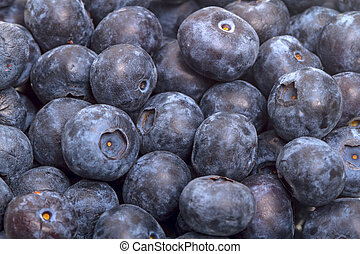 Background of ripe great bilberry - Background of big ripe ...