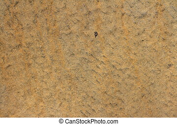 Background of sand in the nature