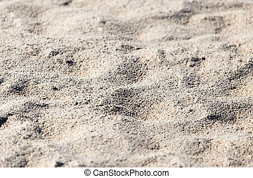 background of sand on the shore