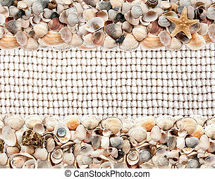 background of seashells on the net for fishing