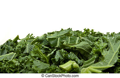Background of Shredded Curly Kale from low perspective.