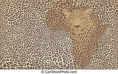 Background of the African jaguar
