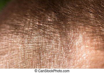 background of the hair. macro