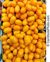 Background of yellow tomatoes in a box