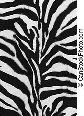 Background of zebra skin pattern