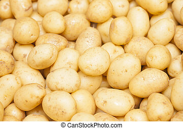 Background potatoes