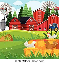 Background scene with chickens in the farm