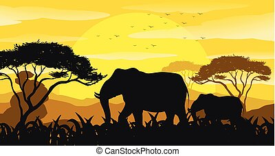 Background scene with silhouette elephants in the field