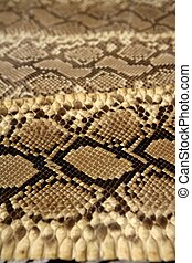 Background snake skin pattern brown