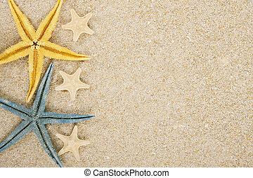 background starfish and sand