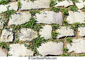 stone pavement with grass sprouted between the stones