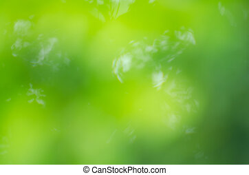 background texture leaves and natrue, natural background