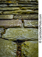 Old Chipped Slate Roof Tiles