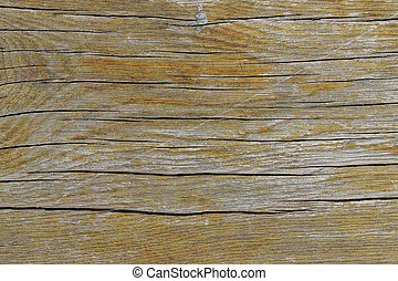 Background texture of old natural wood