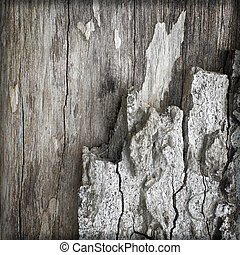 Background Texture of Weathered Wooden Beam With a Knot
