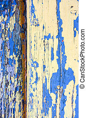 Background texture. Photo for your design.