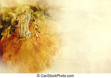 Background texture with a pumpkin and herbs - Still life ...