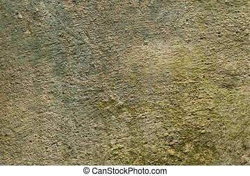 background, vintage texture of old mold concrete