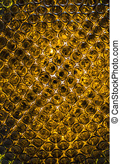 bottoms of empty orange glass bottles