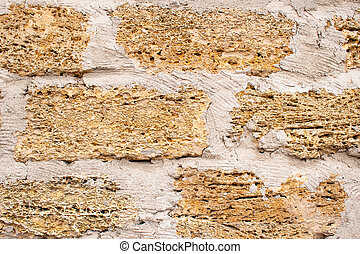 Background wall with shell rock. Old wall. Texture limestone.