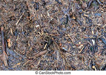 Background wet mulch