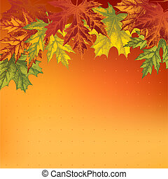 Background with autumn maple leaves