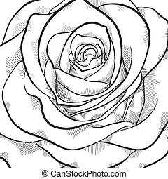 Background with beautiful black and white rose. Hand-drawn...