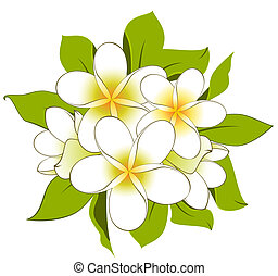 White background with beautiful flowers