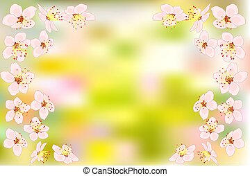 Background with cherry or pink sakura blossoms flowers on blurred green backdrop.