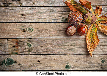 Background with chestnut leaves