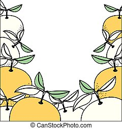 background with color sections of orange fruits