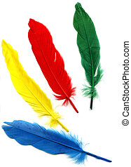 Background with colored feathers