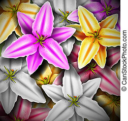 Background with colorful lilies