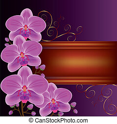 Background with exotic flower orchids, decorated with golden curls. Place for text