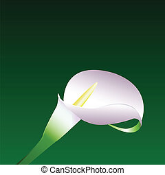 Background with flower. Vector