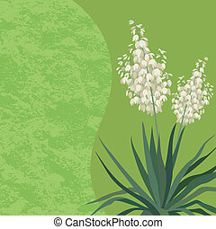Background with flowers Yucca - Floral background with Yucca...