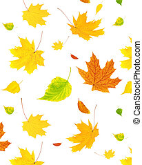 Background with flying autumn leaves