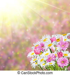 Background with Fragrant Flowers - Colorful spring...