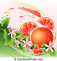 Background with fresh grapefruit