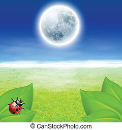Background with full moon, green grass and ladybird. EPS10 ...