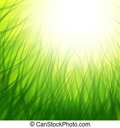background with grass