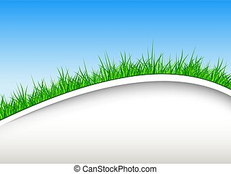Background with green grass and blue sky