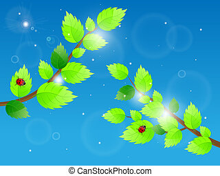 Background with green leaves and ladybird. Vector illustration.