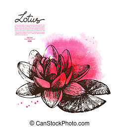 Background with hand drawn sketch beautiful lotus flower and...