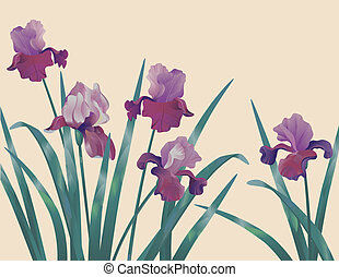 Background with iris - Decorative floral background with...