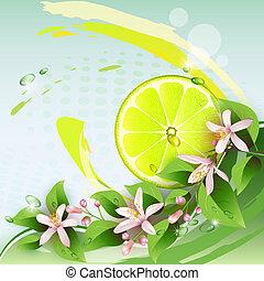 Background with lemon slice