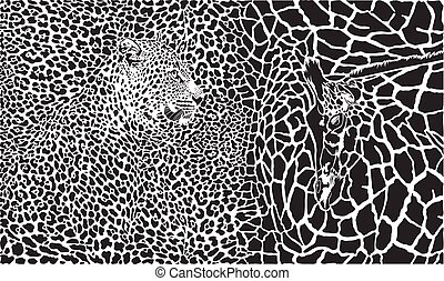 Background with leopard and giraffe