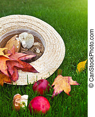 Background with maple leaves, mushrooms and apples