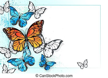Background with monarchs and morpho